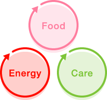 food energy care